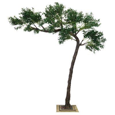 3.2m Canopy Olive Tree wedding hire