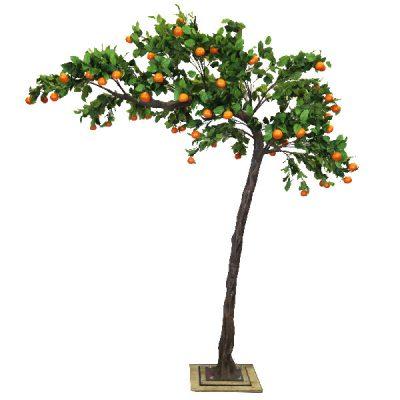 3.2m Canopy Orange Tree wedding hire