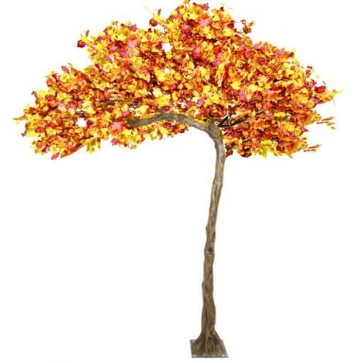 autumn tree hire wedding decor