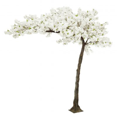 white blossom tree hire wedding decor