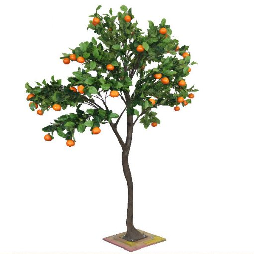 3m Orange Tree wedding hire