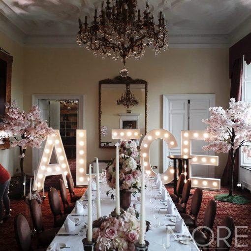 3m Pink Blossom Tree wedding hire