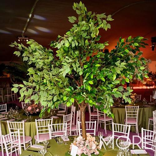 6ft Ficus Tree wedding hire