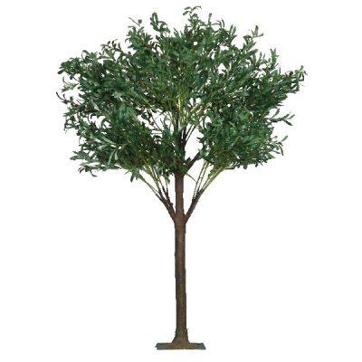 6ft Olive Tree wedding hire