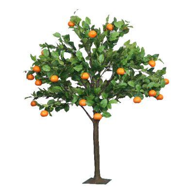 6ft Orange Tree wedding hire