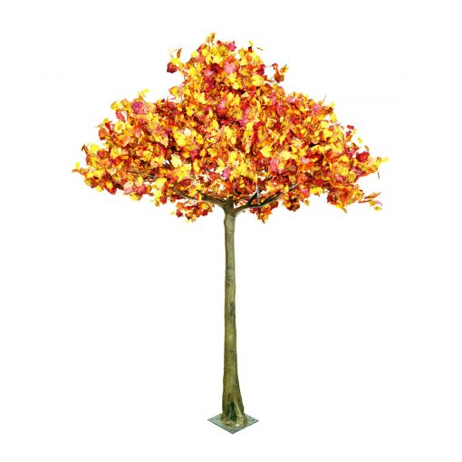autumn tree hire wedding decor