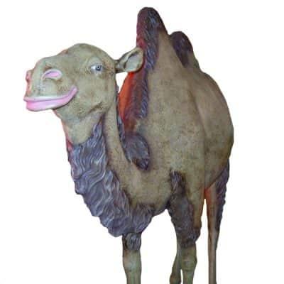 camel prop hire mehdni wedding theme