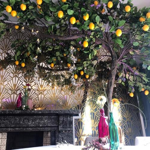 3.2m Canopy Lemon Tree hire