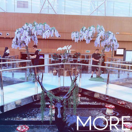 3.2m Lilac Canopy Wisteria Tree hire