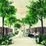 Wedding Decor Hire Ficus Tree