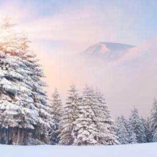 snowy mountain backdrop wedding hire