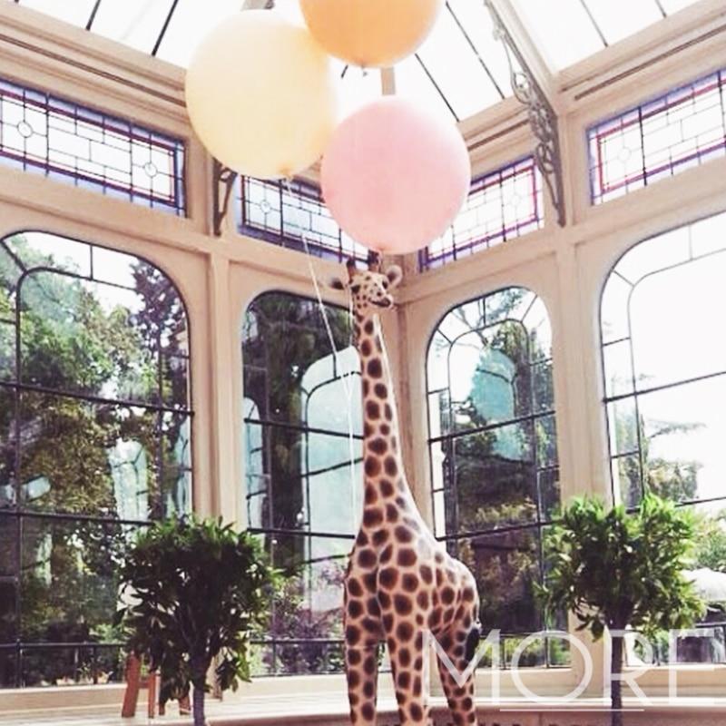 More Weddings giraffe prop hire wedding